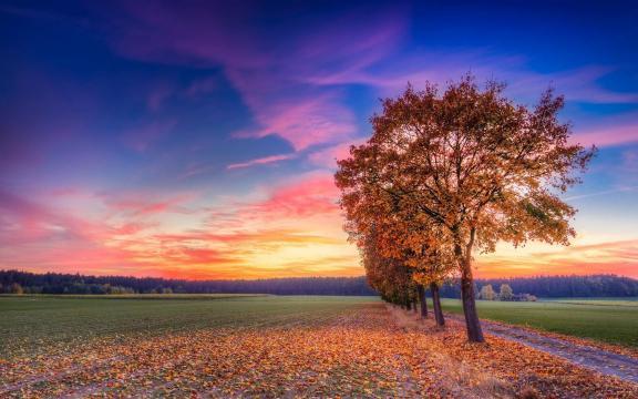 绝美秋季的晚霞之舞