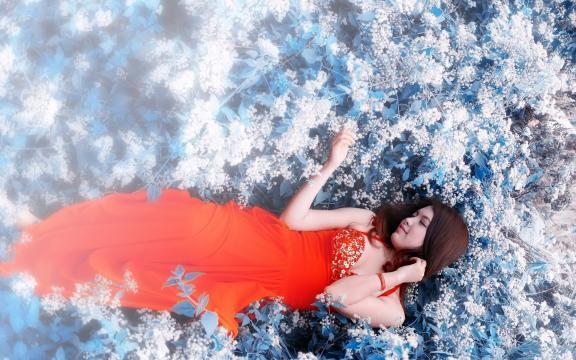 美人如花隔云端