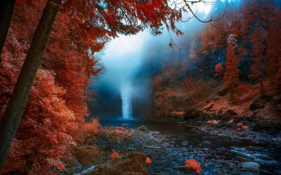 美得惊心动魄的秋季风光