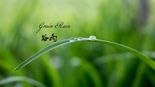 谷雨:春季的最后一个节气