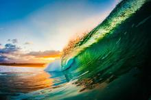 海浪里的独特世界