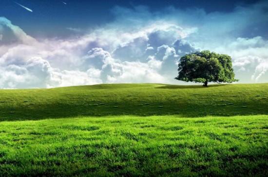 xp美丽草原风光
