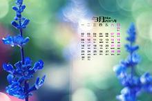 2015年春意盎然3月日历