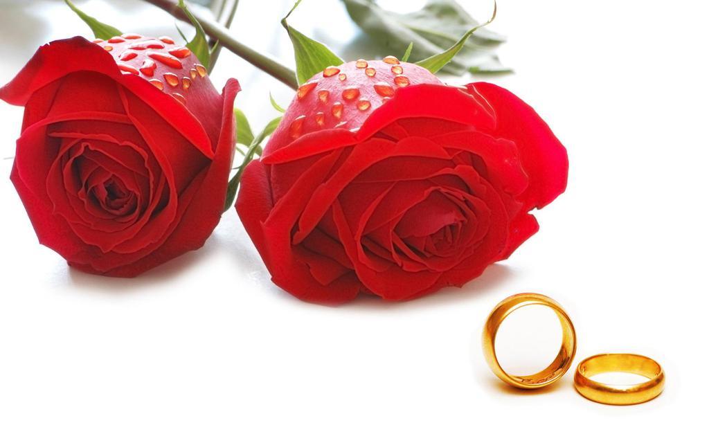 精致漂亮婚戒