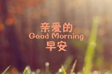 亲爱的早安带字图片