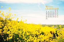 2016年10月清新日历