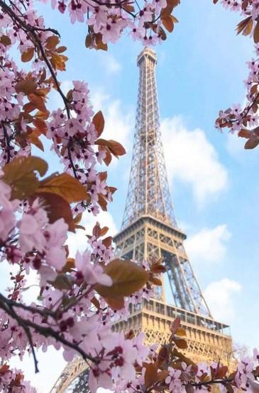 浪漫之都巴黎梦幻风景