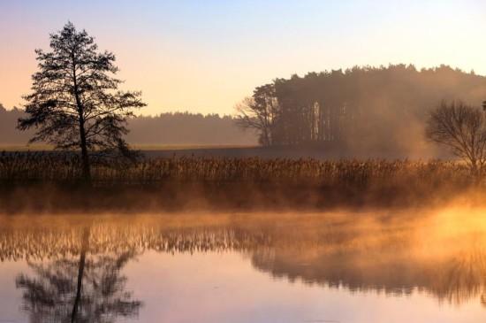 清晨朦胧风景
