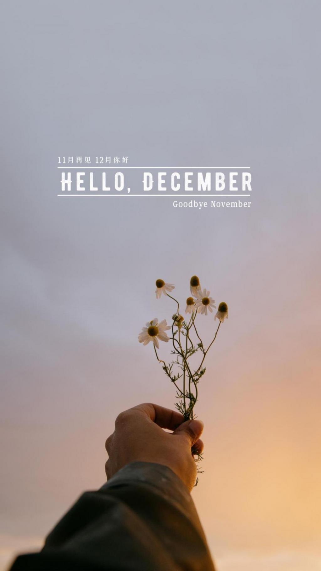 11月再见,12月你好清新唯美风景