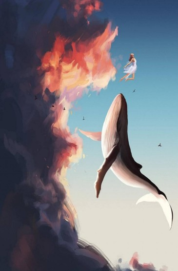 手绘鲸鱼插画