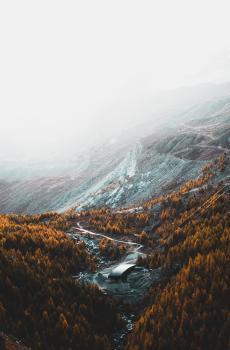 深秋时节的景色