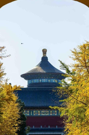 北京城唯美初秋自然风光