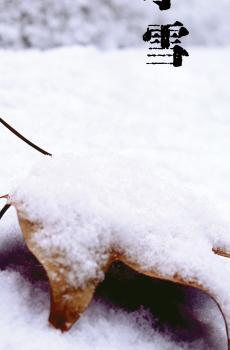 小雪分为三候