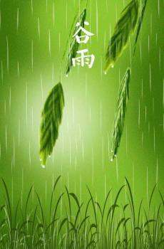 传统节气谷雨