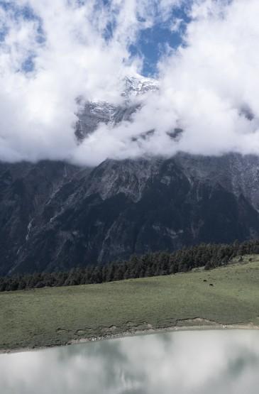 草原雪山清新自然风光