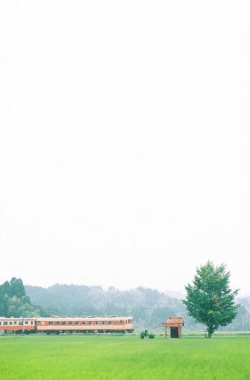 夏日小清新风景